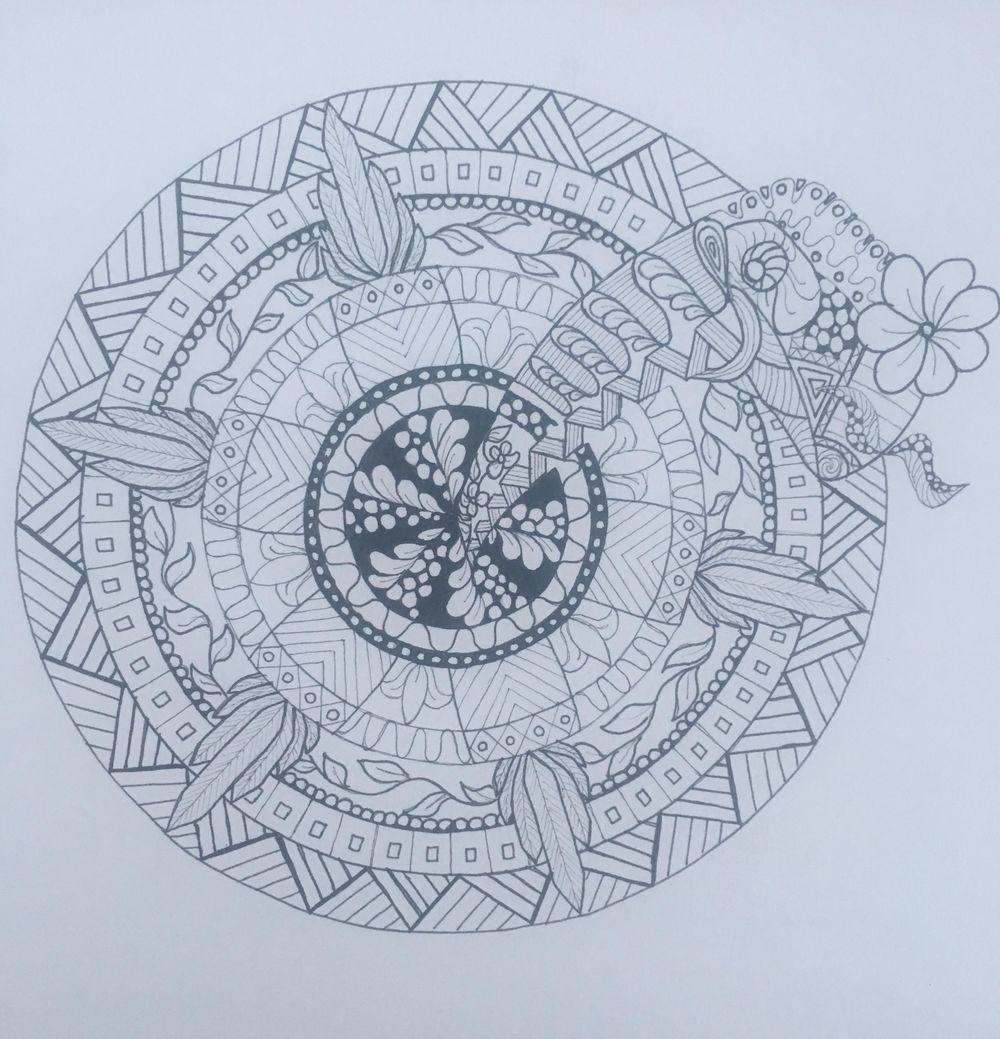 Americas nature mandala - image 1 - student project