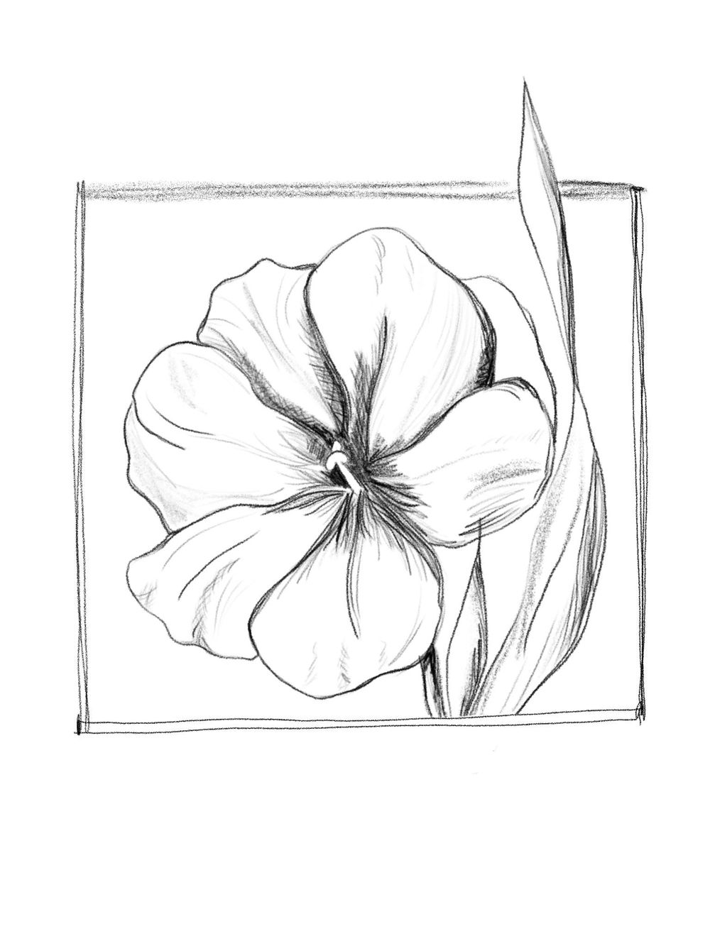 Flower Rough Sketch - image 4 - student project