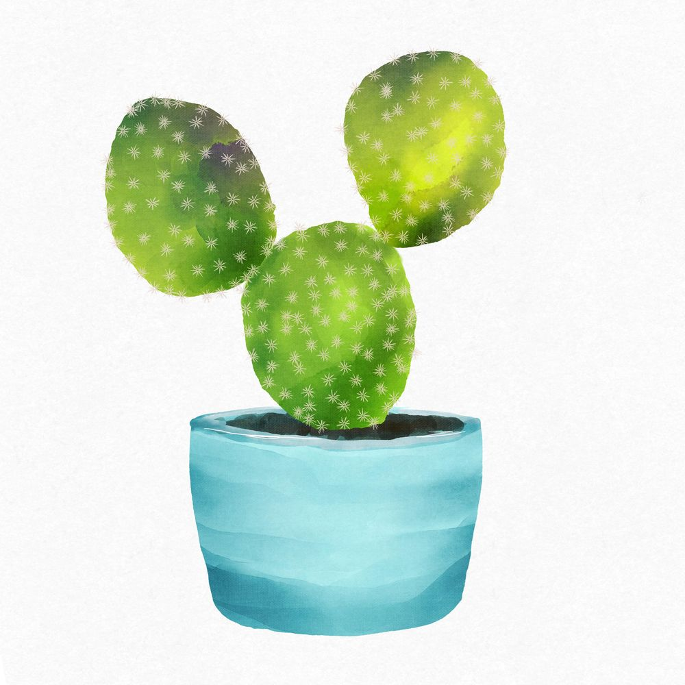 Mickey Mouse Cactus - image 1 - student project