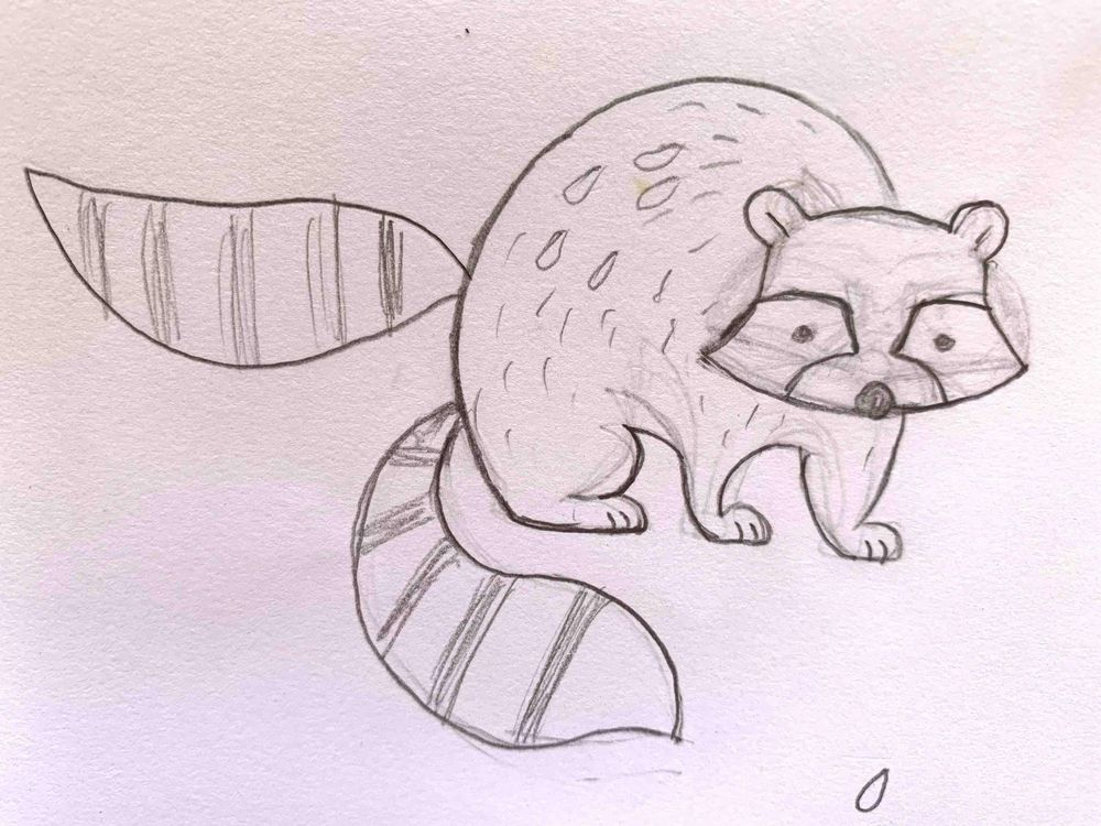 Raccoons on Toast! - image 1 - student project
