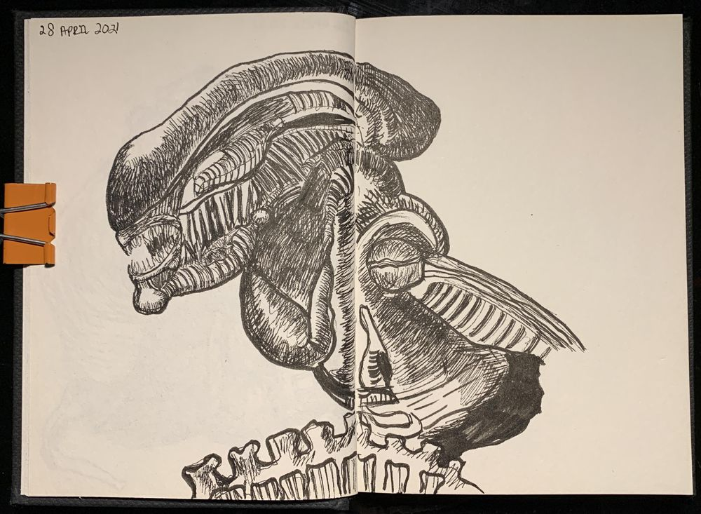 7 Days, 30 minutes of Drawing - image 4 - student project