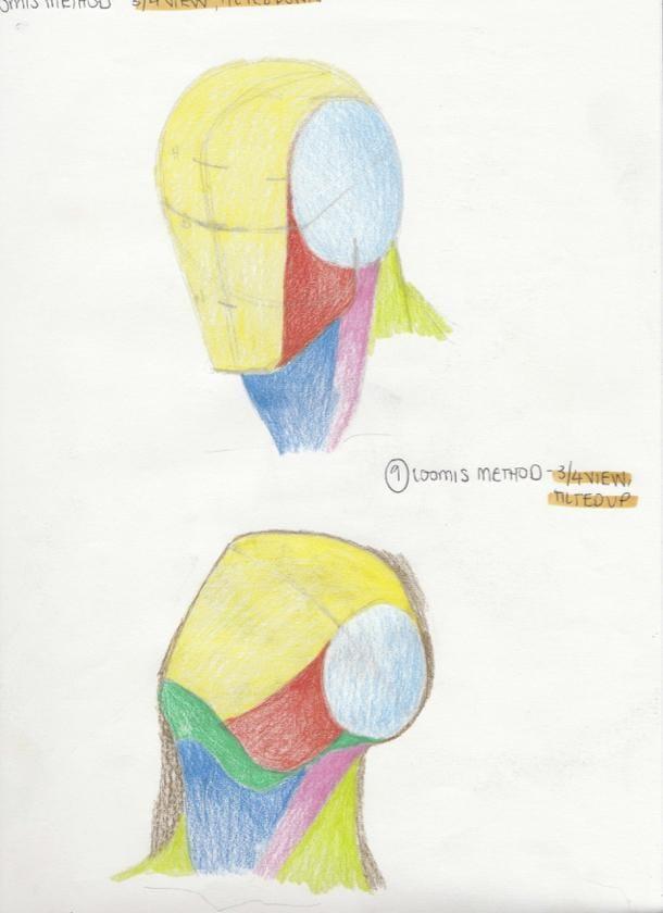 Portrait Studies - The Loomis Method - image 5 - student project