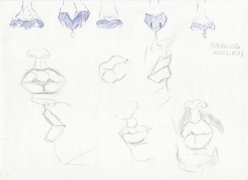 Portrait Studies: Features of the Face - image 7 - student project
