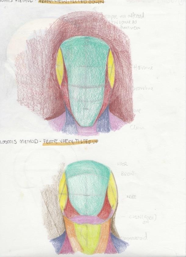 Portrait Studies - The Loomis Method - image 4 - student project
