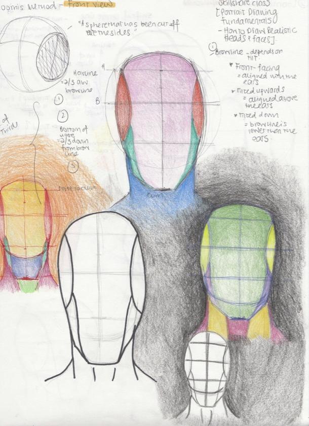 Portrait Studies - The Loomis Method - image 1 - student project