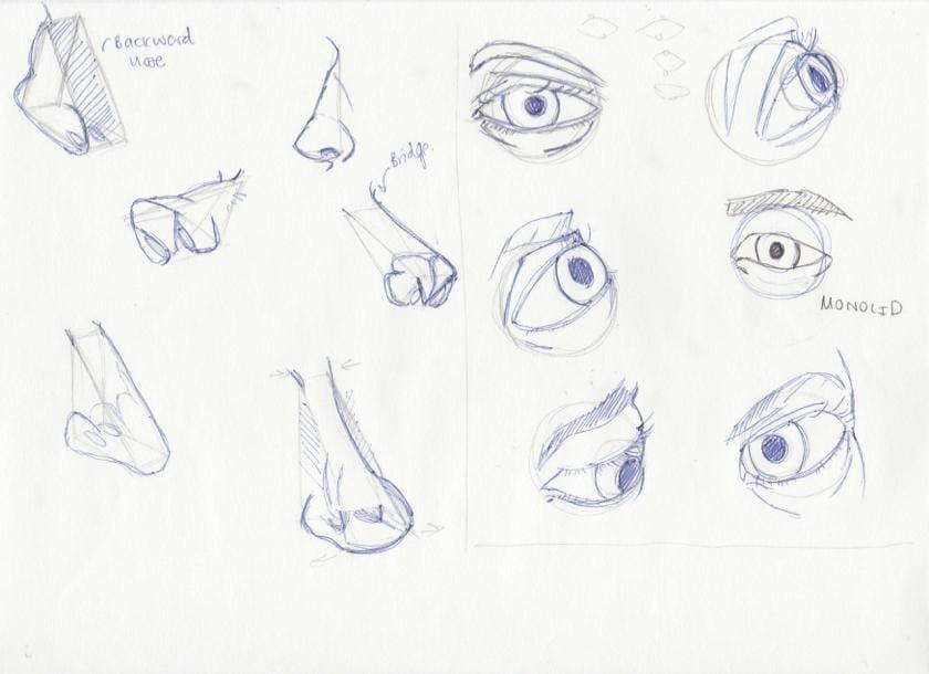 Portrait Studies: Features of the Face - image 5 - student project