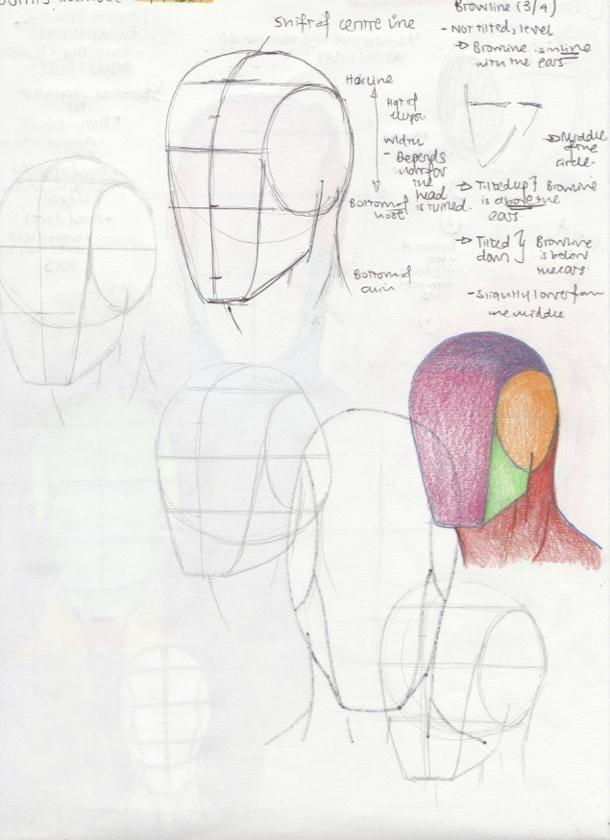 Portrait Studies - The Loomis Method - image 2 - student project