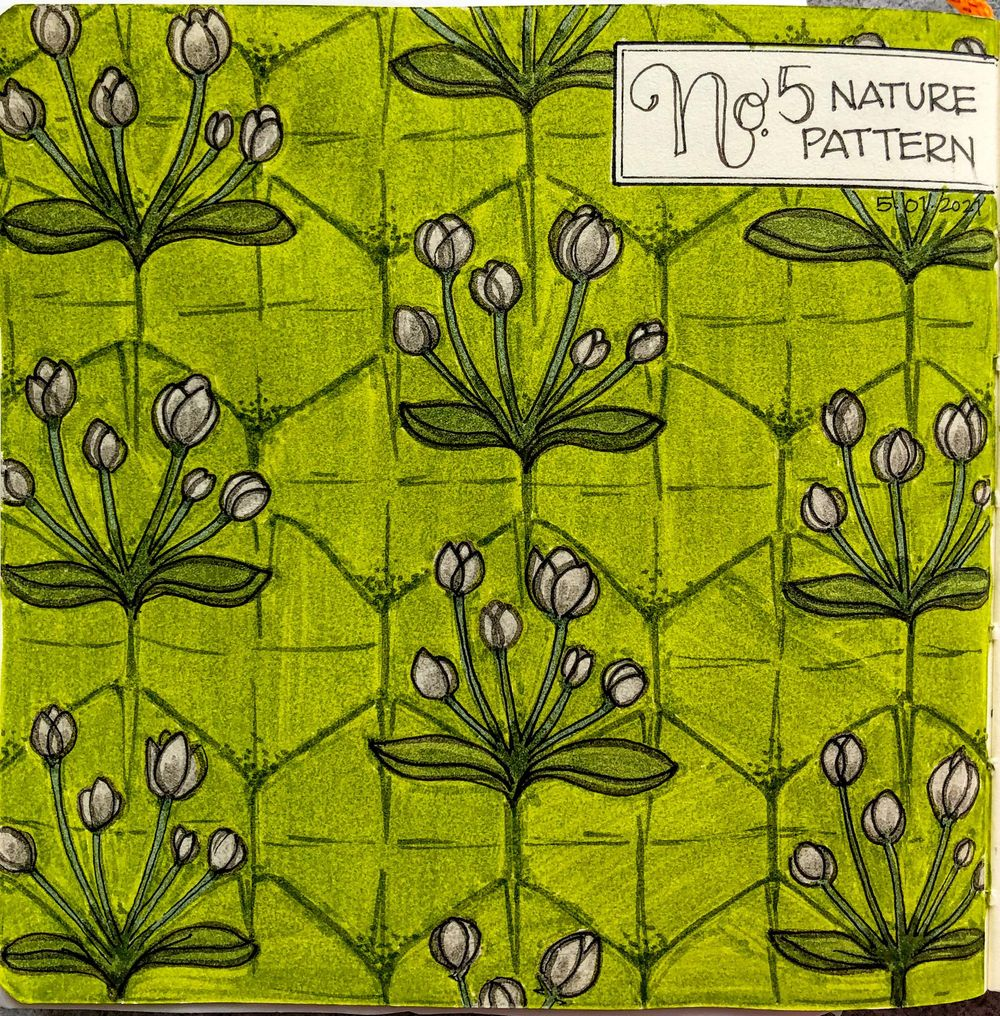 Urban Nature Journaling - image 4 - student project