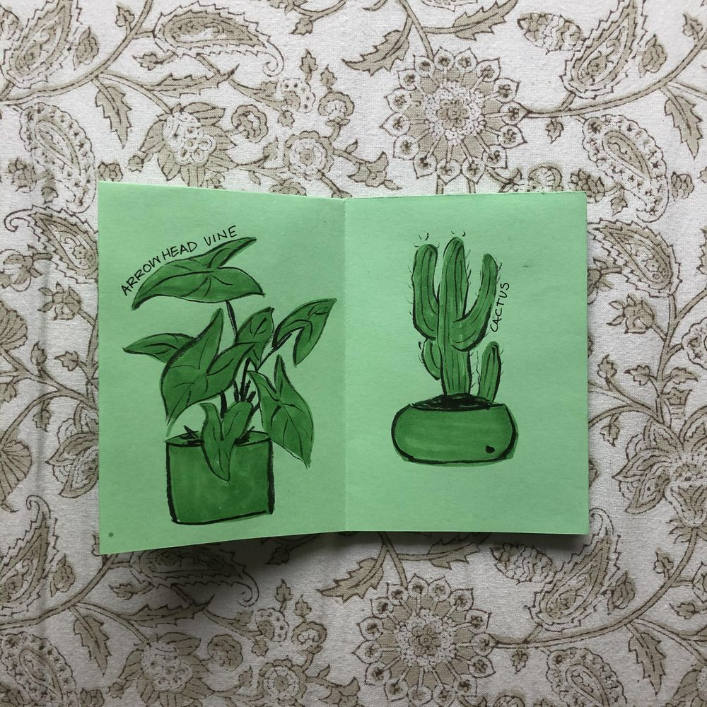 Plants I have killed - image 3 - student project