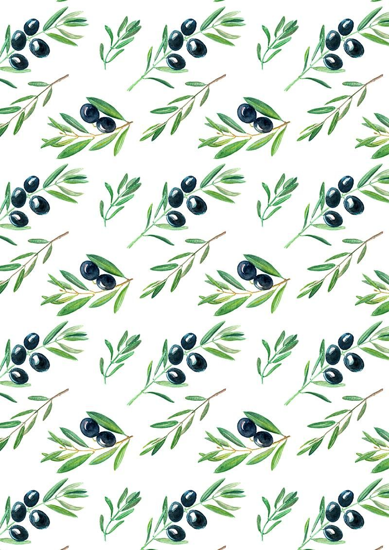 Olive Branches - image 3 - student project