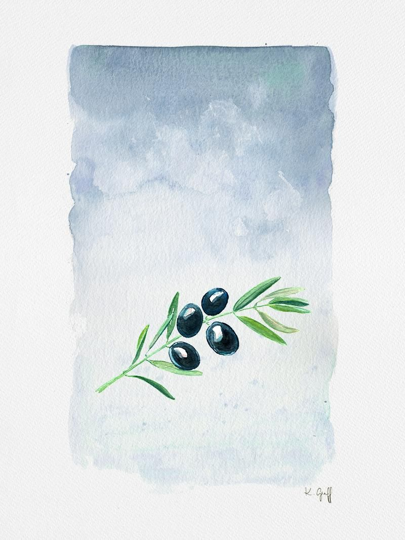 Olive Branches - image 1 - student project