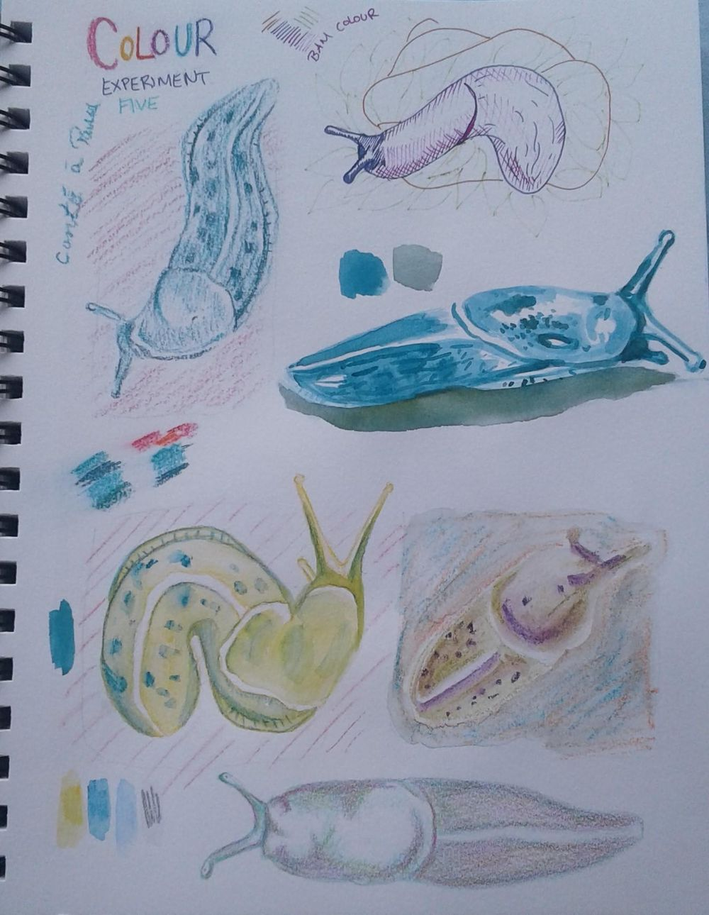 Finding My Illistration Style in 6 Simple Experiments - image 5 - student project