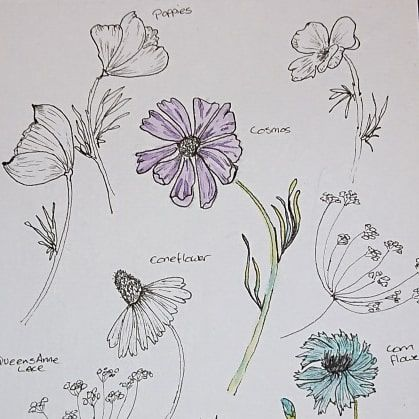 I can draw the prettiest flowers! - image 1 - student project