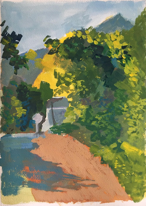 Oak tree shadows - image 1 - student project