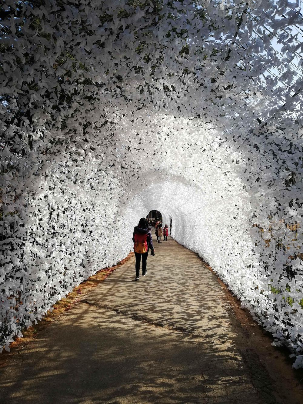 Random places in Seoul, South Korea - image 1 - student project