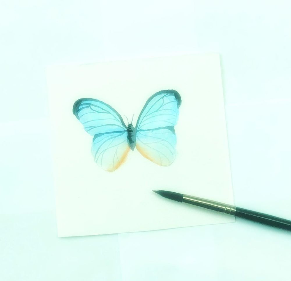 Watercolor butterfly - image 1 - student project