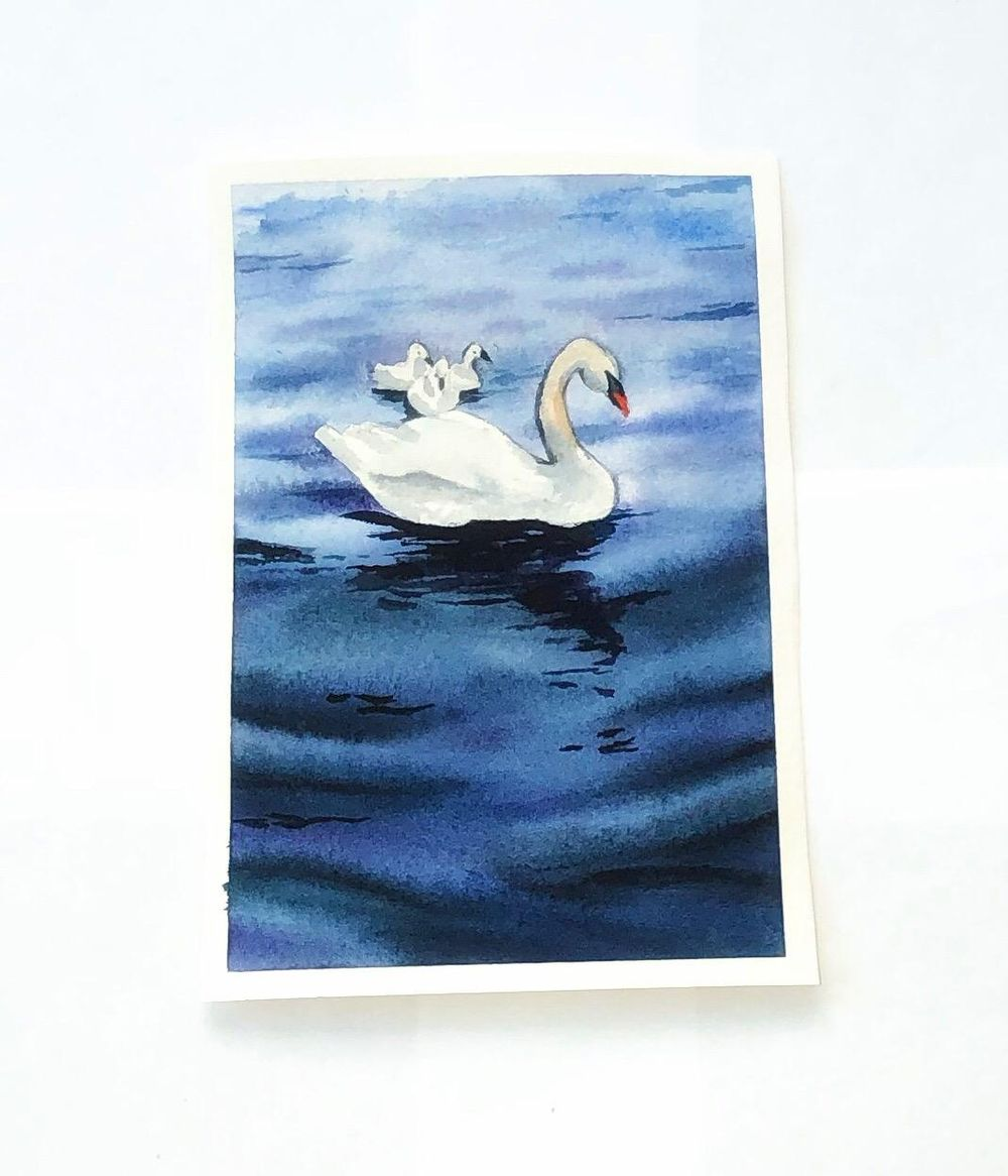 Watercolor swan lake - image 1 - student project