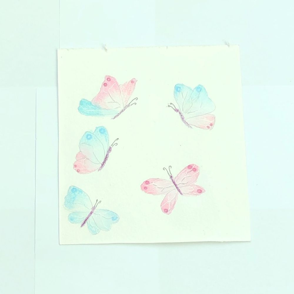 Butterflies in watercolor and coloured pencil - image 1 - student project