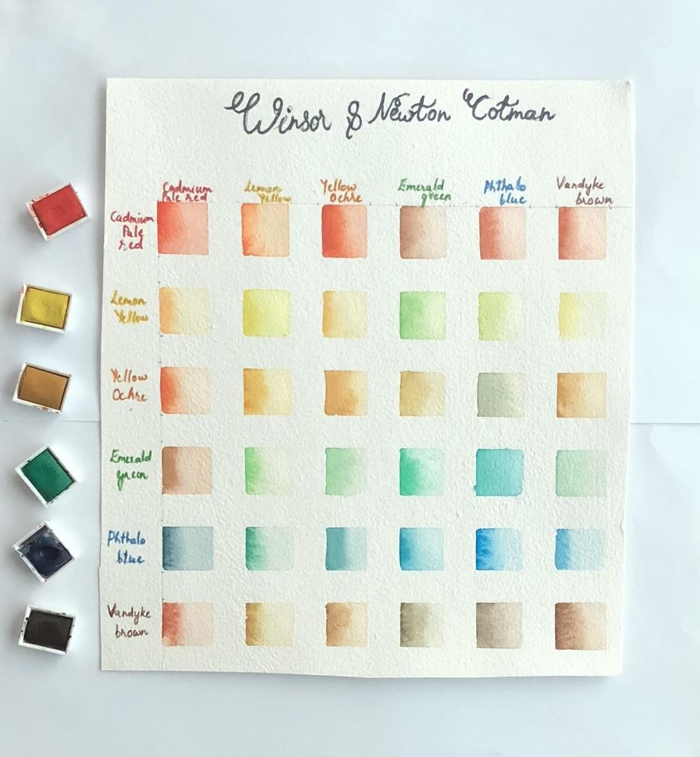 Winsor & Newton Cotman Color chart - image 3 - student project