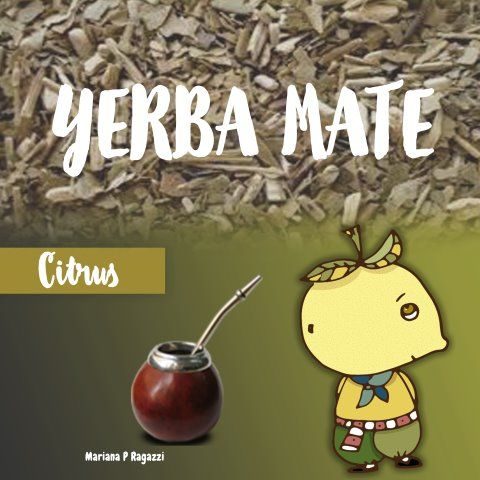 Yerba mate tastes  - image 3 - student project