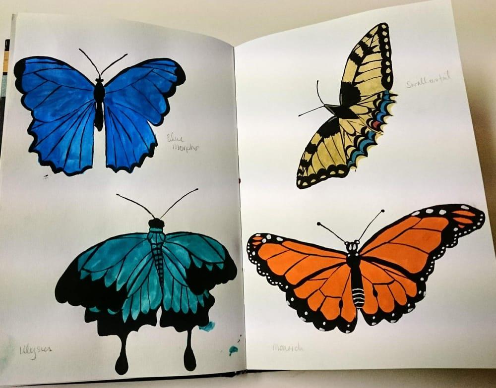 Sketchbook Magic 1 - image 14 - student project