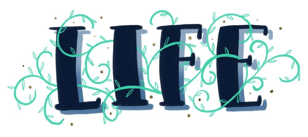 Sample Project: LIFE - image 4 - student project