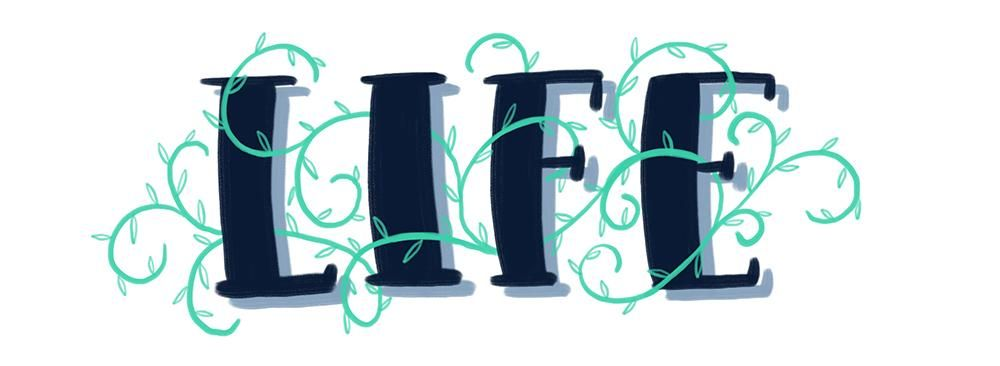 Sample Project: LIFE - image 2 - student project