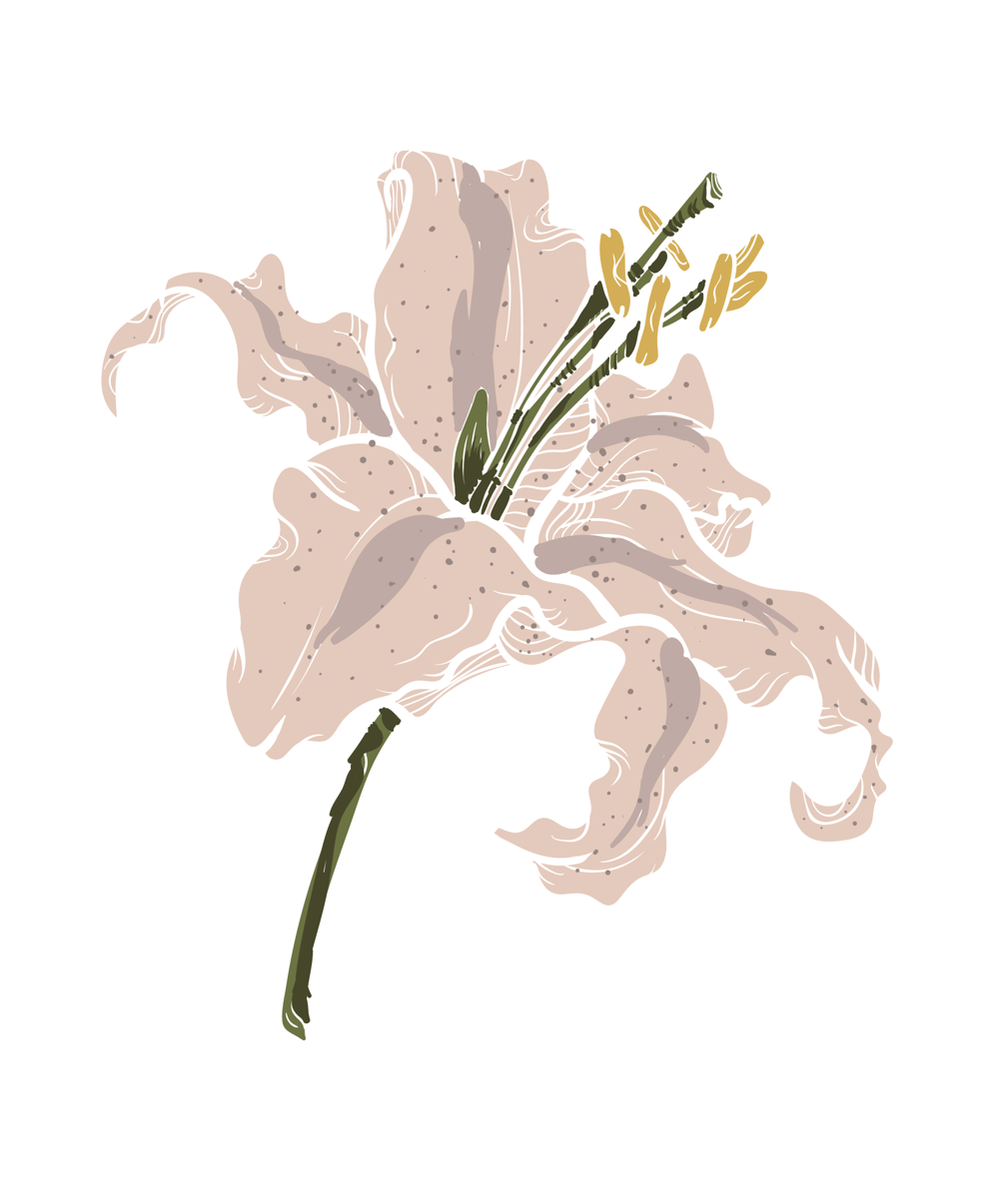 Lily - image 3 - student project