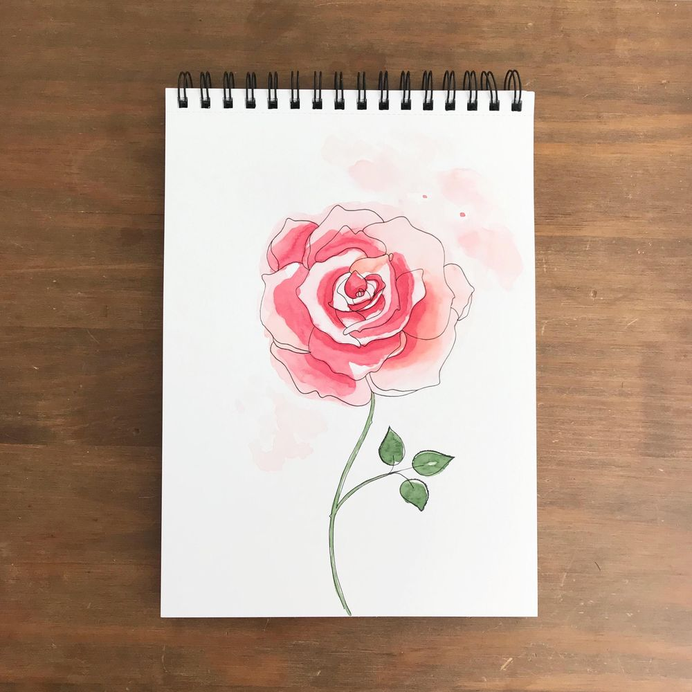 Roses, 3 ways - image 3 - student project