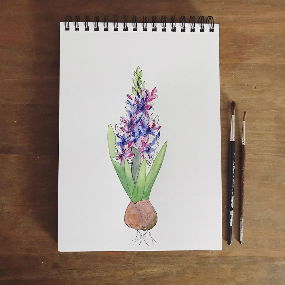 Watercolor tulips and hyacinth - image 2 - student project