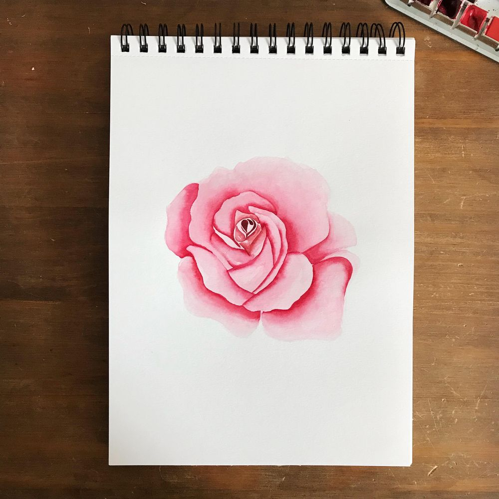 Roses, 3 ways - image 1 - student project
