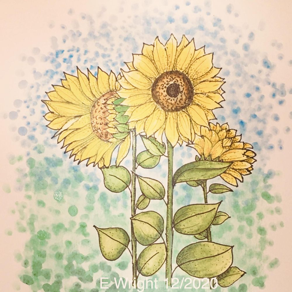 Fun with Sunflowers - image 1 - student project