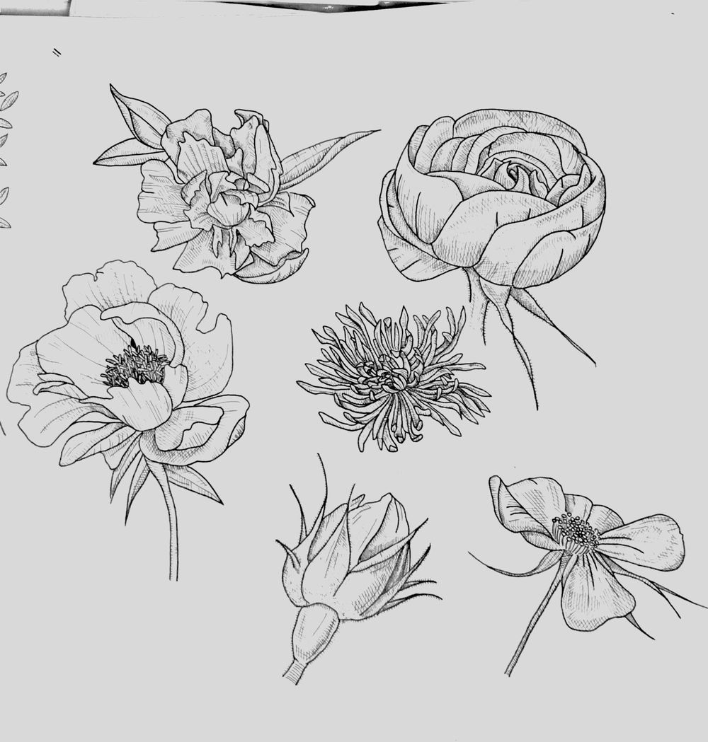 Floral Illustration in Photoshop - image 1 - student project