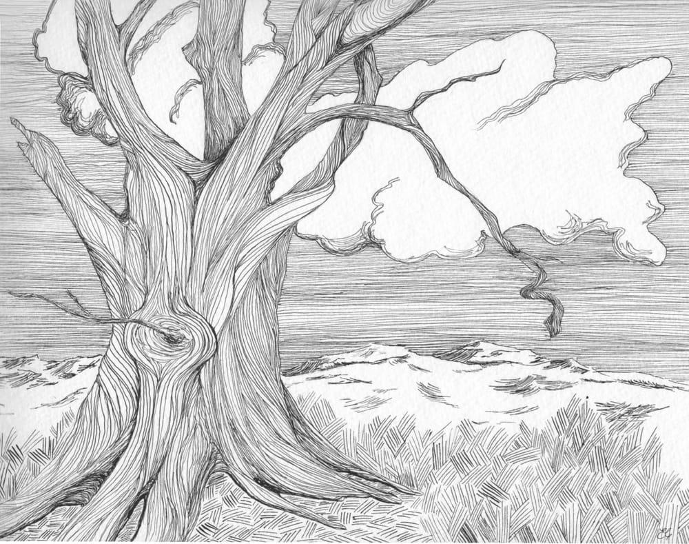 English Tree - image 3 - student project