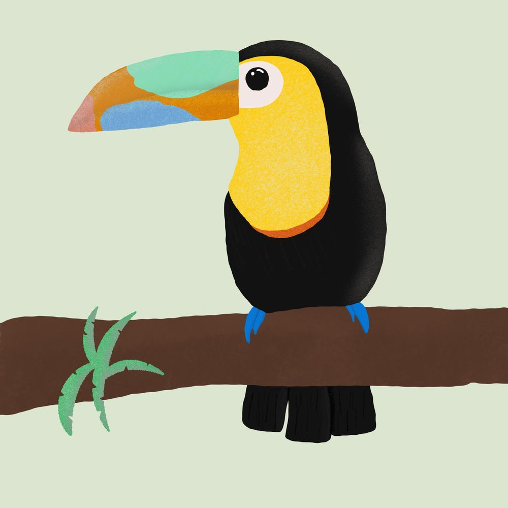 Toucan Do it! - image 1 - student project