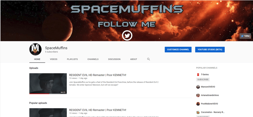 SpaceMuffins Gaming Channel - image 1 - student project