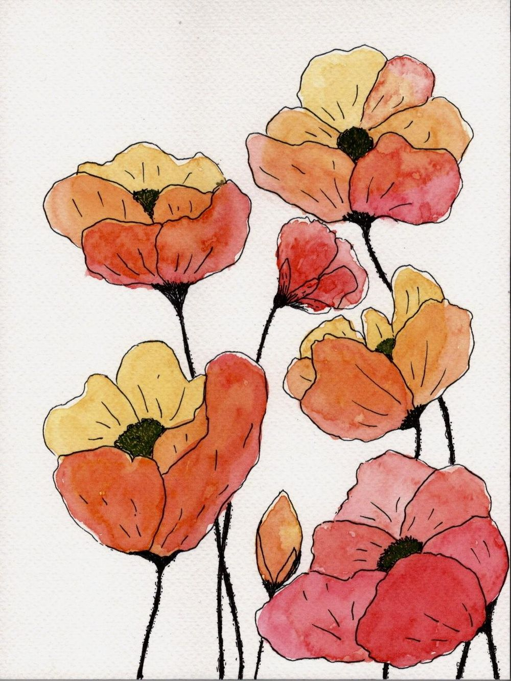 Loose poppies in different styles - image 2 - student project
