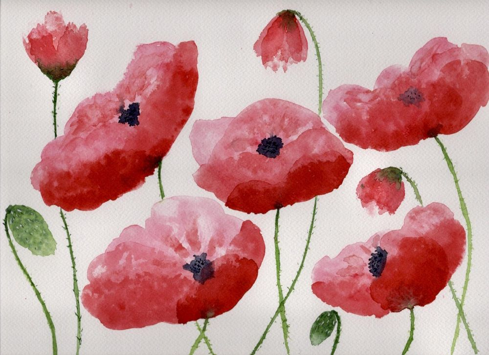 Loose poppies in different styles - image 3 - student project