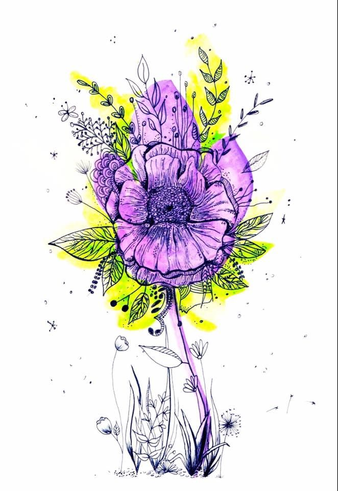 Botanical Line Drawing with water colour - image 2 - student project
