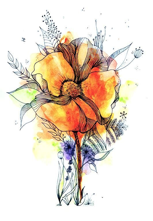 Botanical Line Drawing with water colour - image 1 - student project