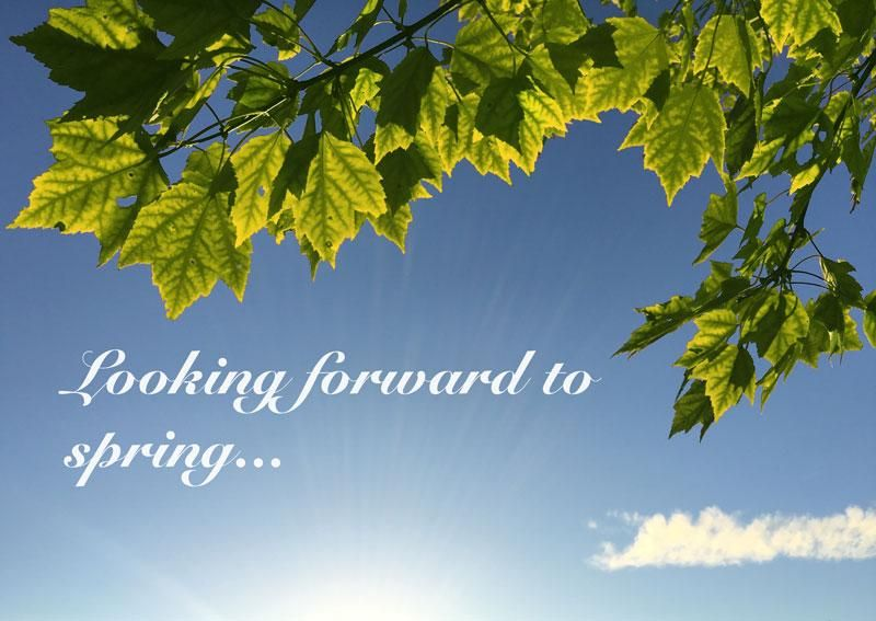 Looking forward to spring - image 3 - student project