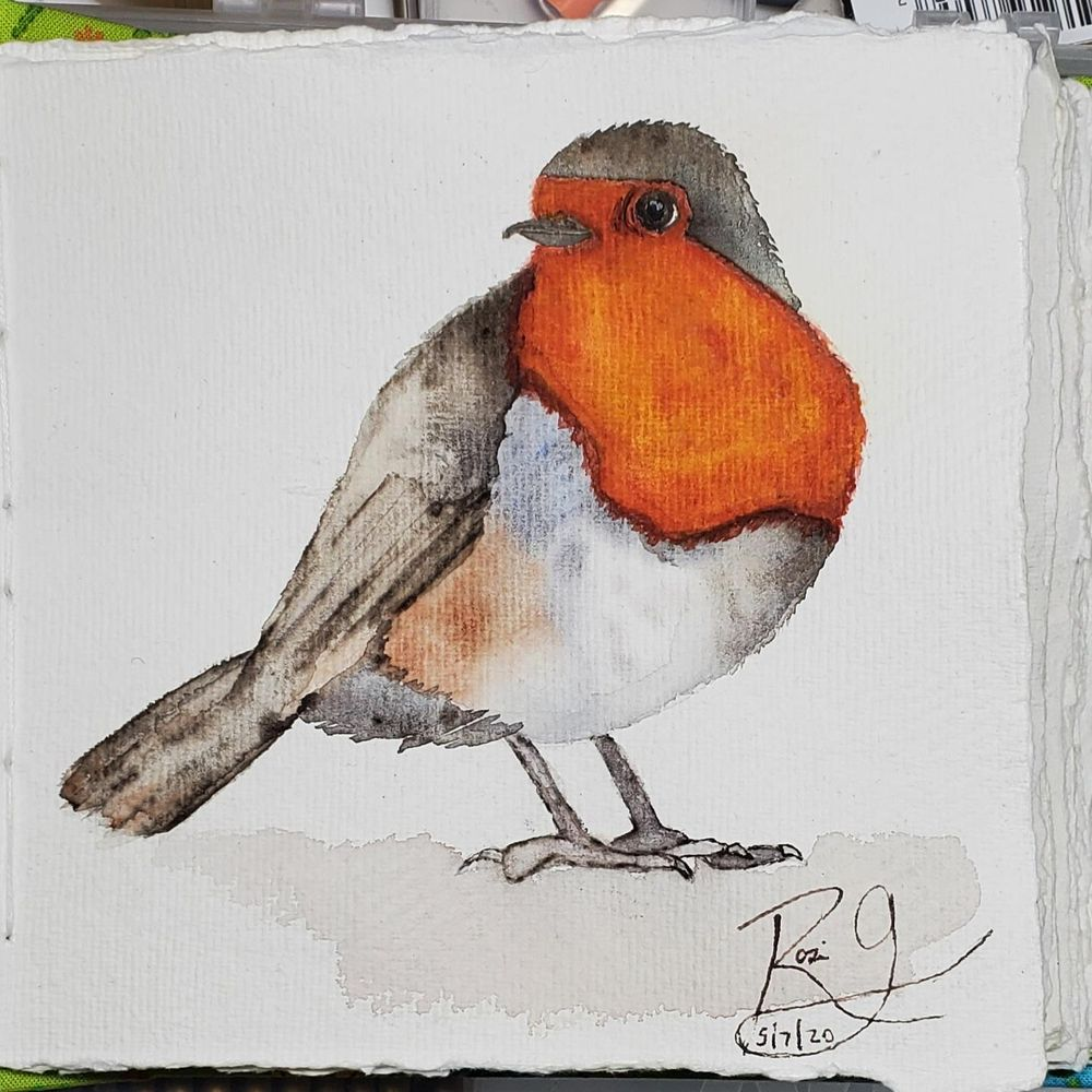 Puffy Robin - image 1 - student project