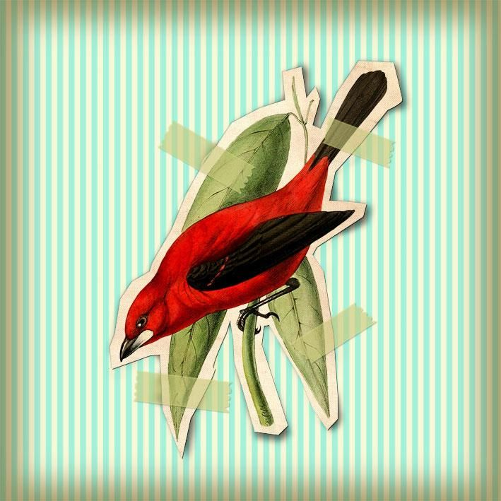 Vintage bird cutout - image 2 - student project