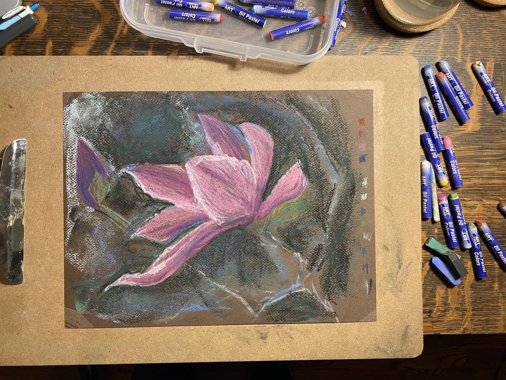 Oil Pastel (and soft) Japanese Magnolia - image 1 - student project