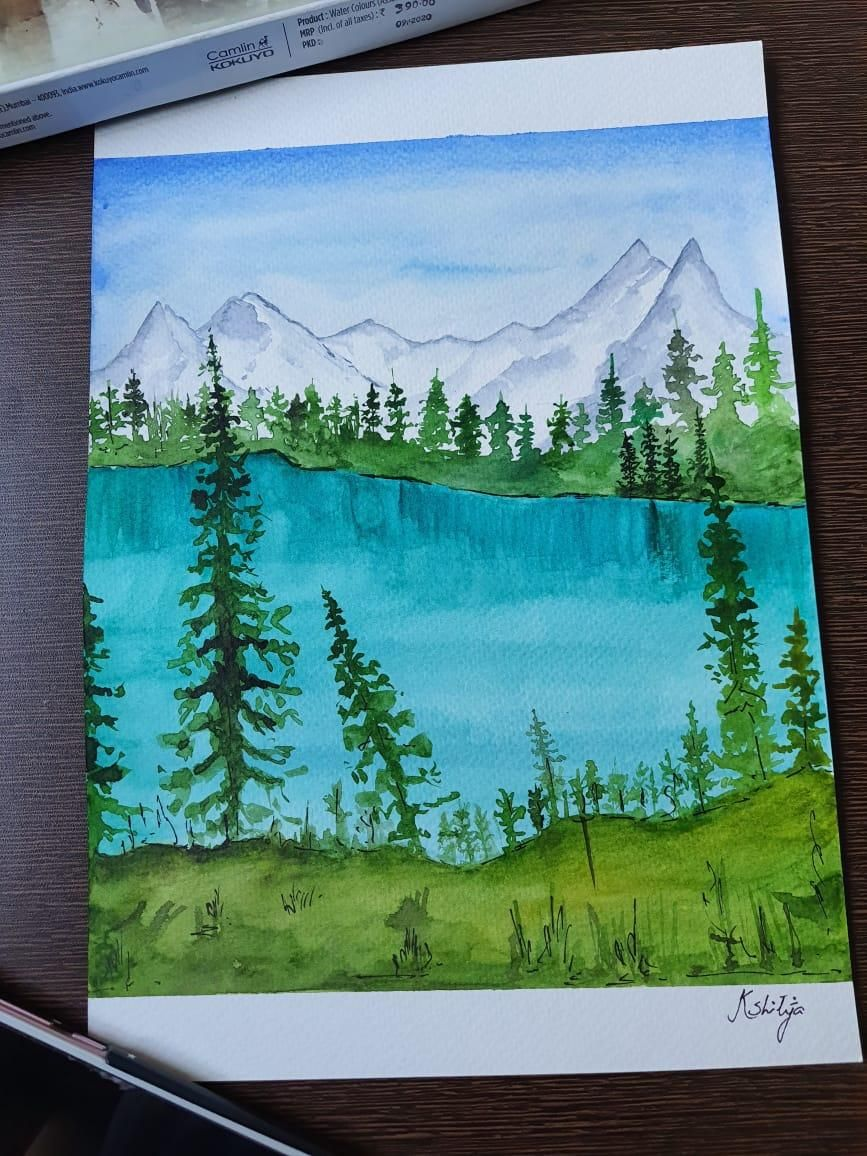 Green forests - image 2 - student project