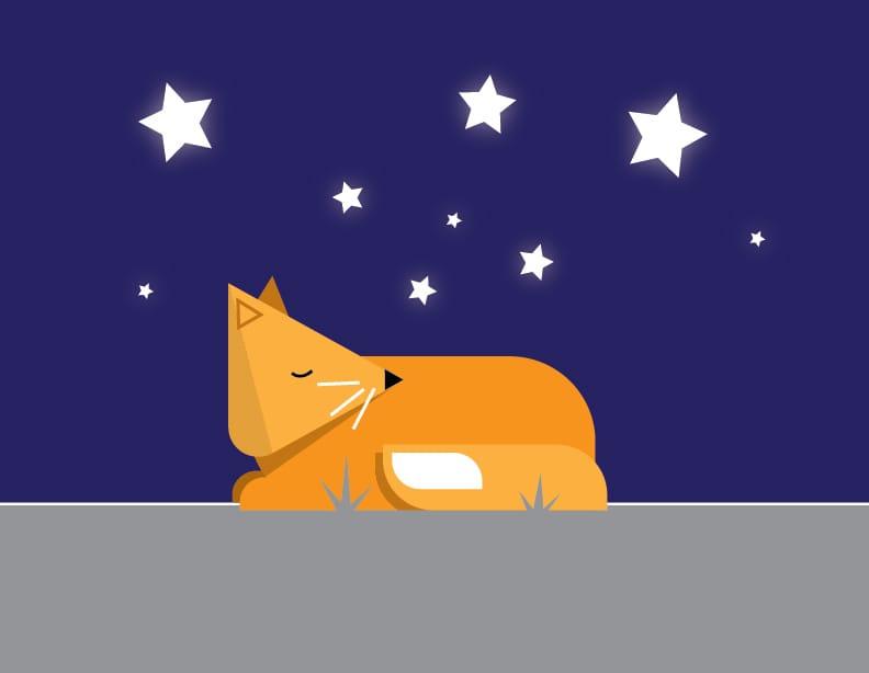 Illustrator - image 5 - student project