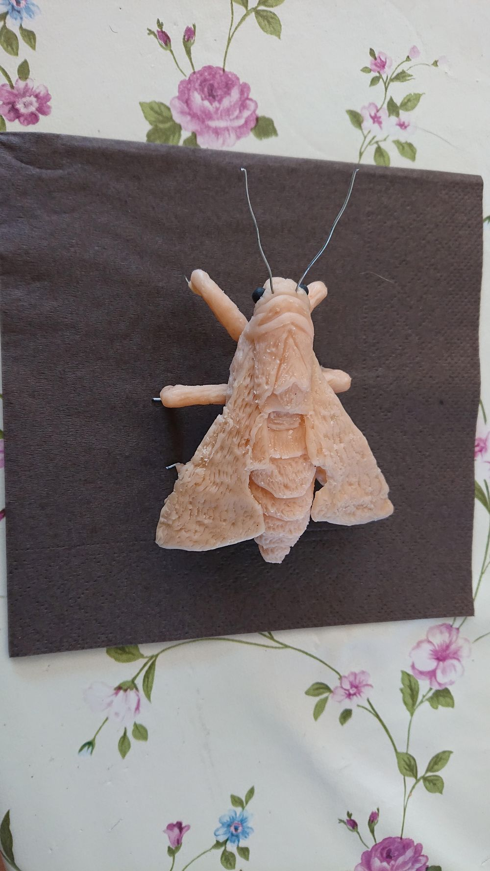 Unpainted Moth - image 2 - student project