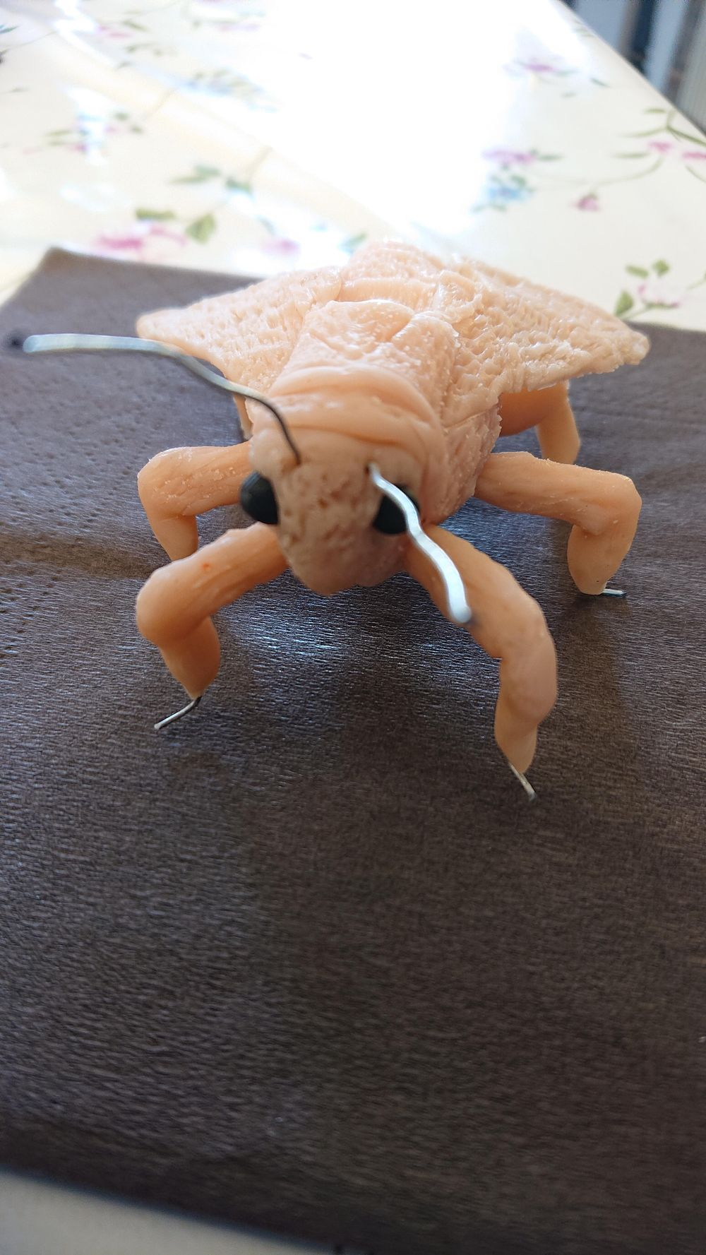 Unpainted Moth - image 1 - student project