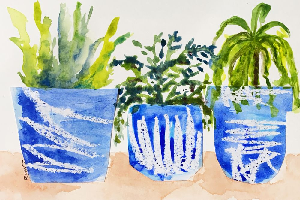 Plants in pots - image 1 - student project