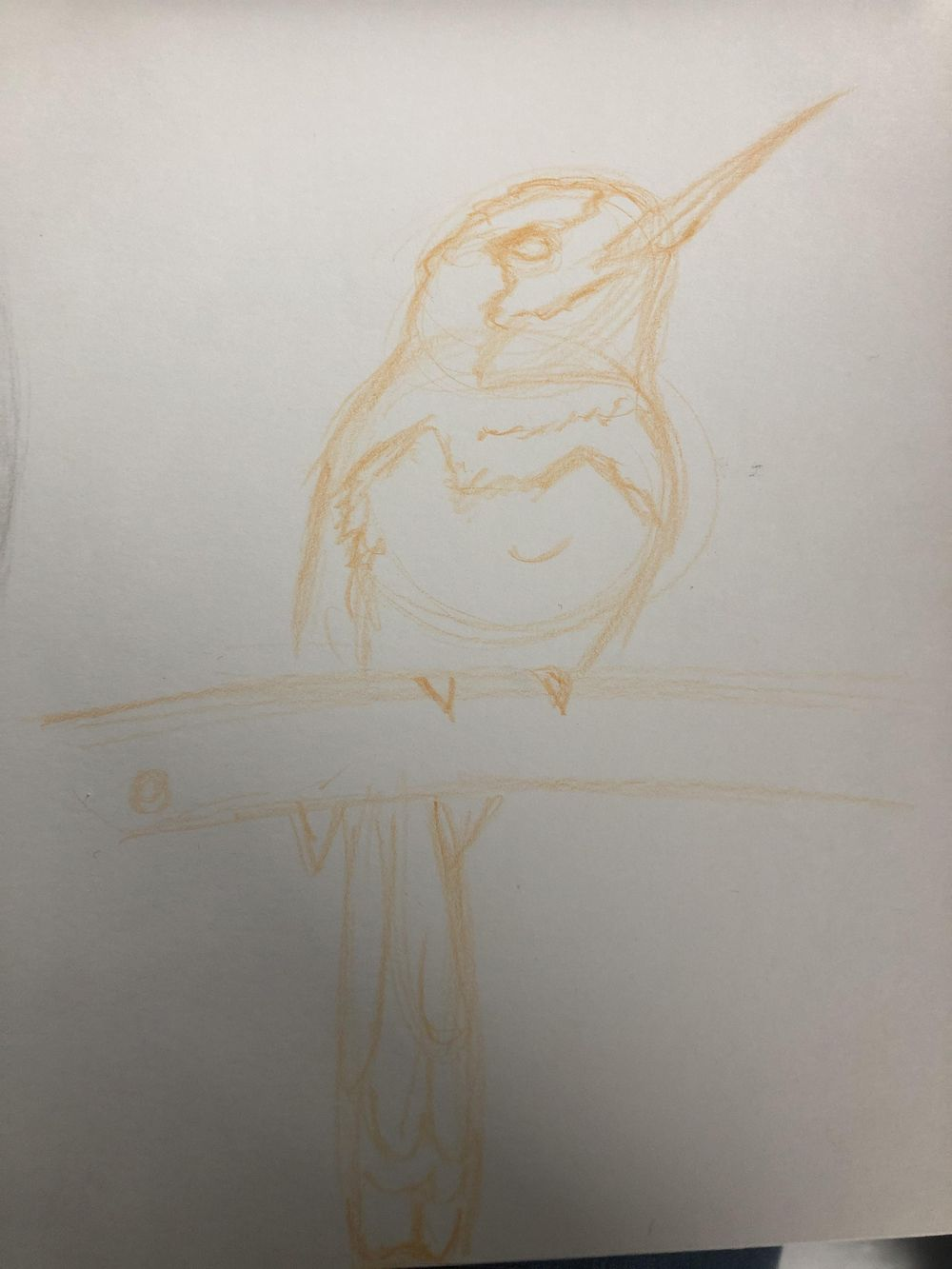 Birb - image 1 - student project